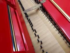 チェンバロ(弦)